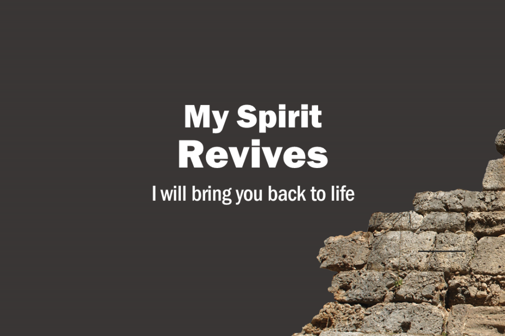 My Spirit Revives