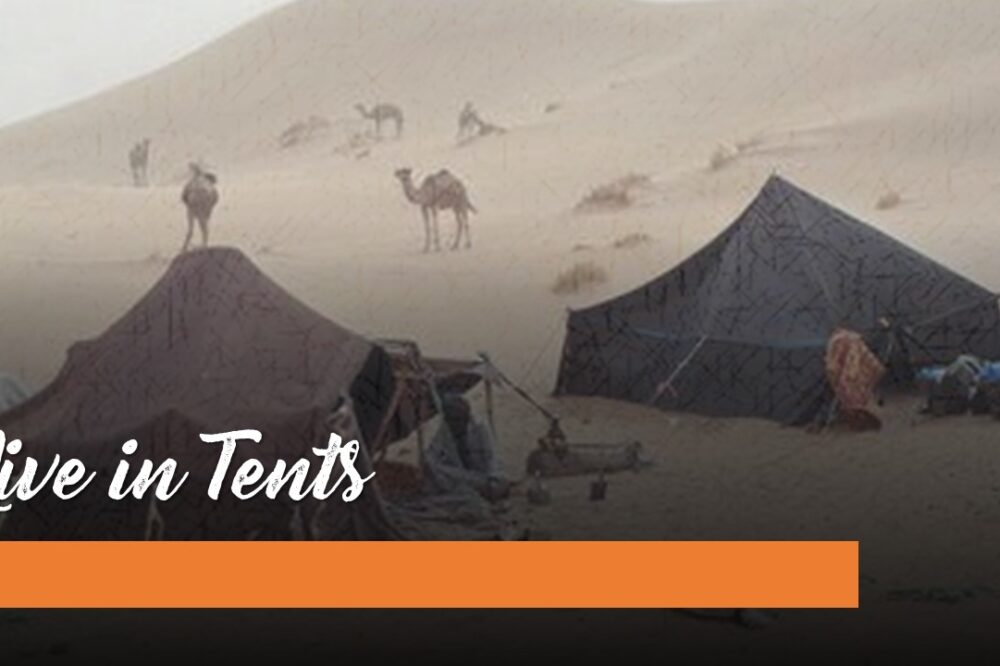 Live in Tents