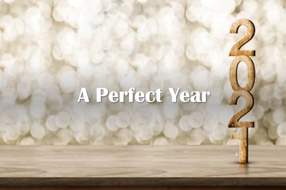 A Perfect Year